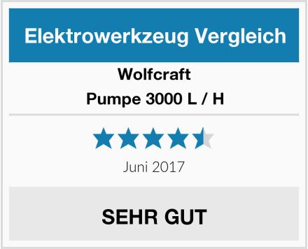 Wolfcraft Pumpe 3000 L / H Test