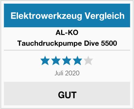 AL-KO Tauchdruckpumpe Dive 5500 Test
