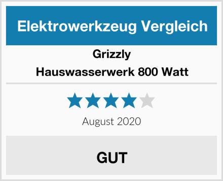 Grizzly Hauswasserwerk 800 Watt Test