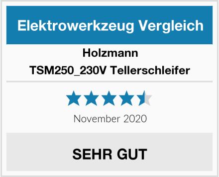 Holzmann TSM250_230V Tellerschleifer Test